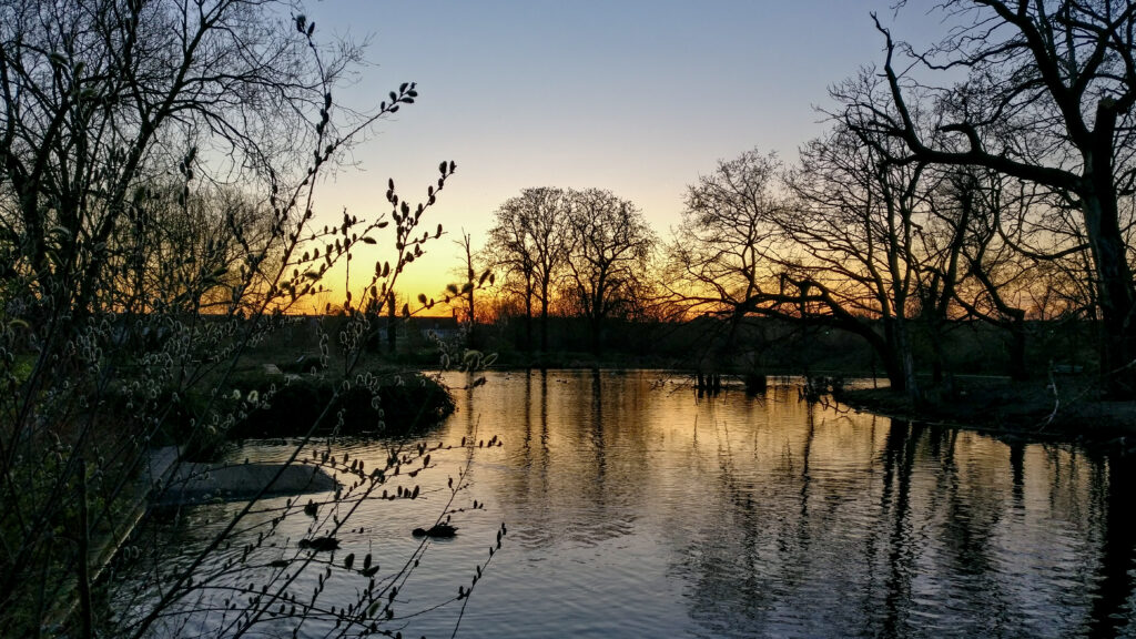 March sunset over the pond in Lordship Rec